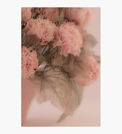 Dried Pink Peonies Photographic Print