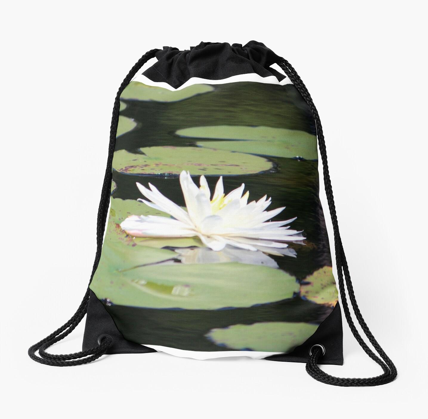 American White Waterlily by Cynthia48