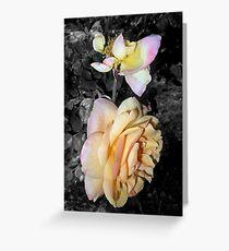 peach and mangled rose, 05/04/17 Greeting Card