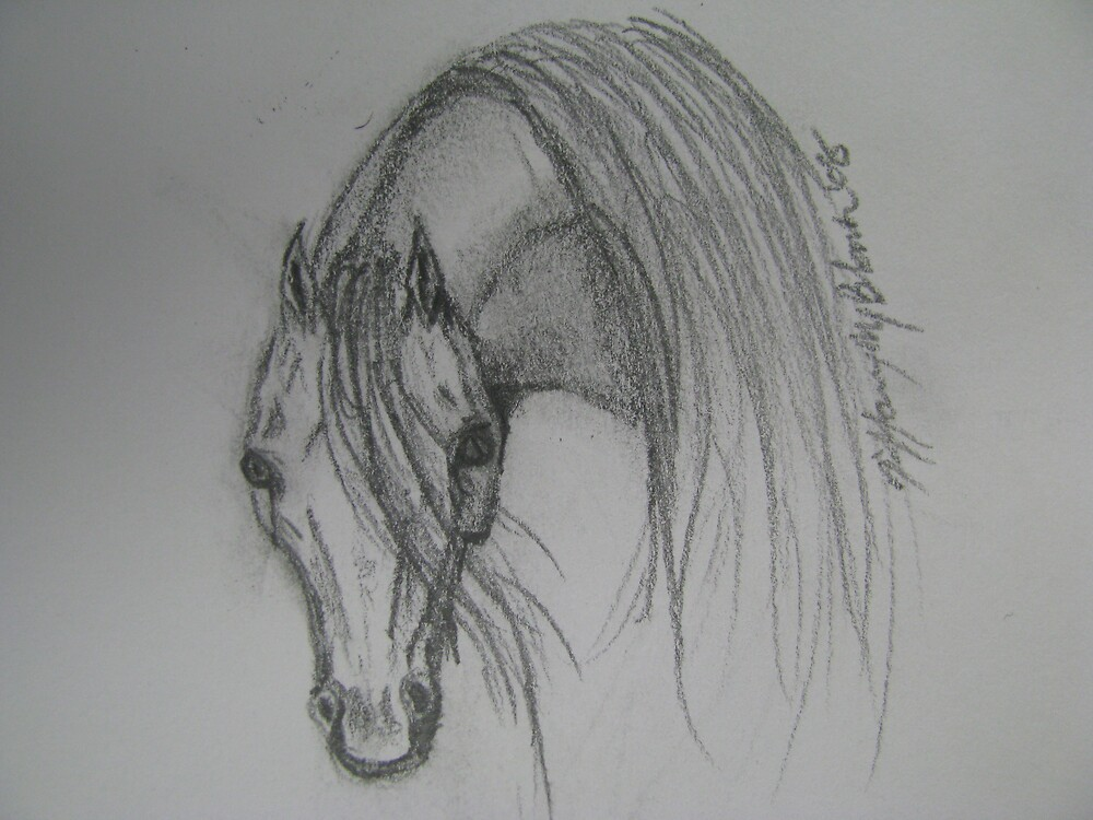 Arabian by Cowgirlforever