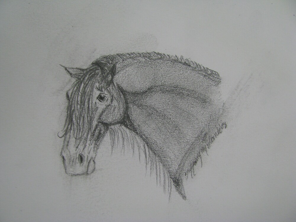 Funny Draft Drawing by Cowgirlforever