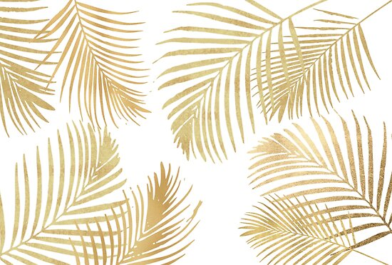 Gold Palm Leaves On White By Naturemagick