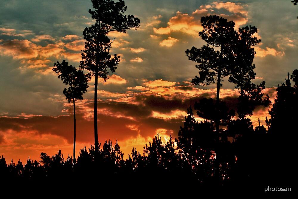 morning sunrise by photosan