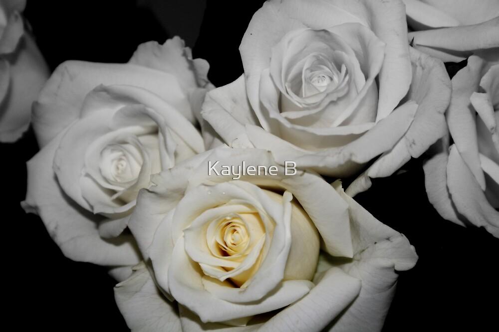 Rosetry by Kaylene B