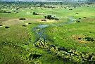Okavango Delta Aerial by Carole-Anne