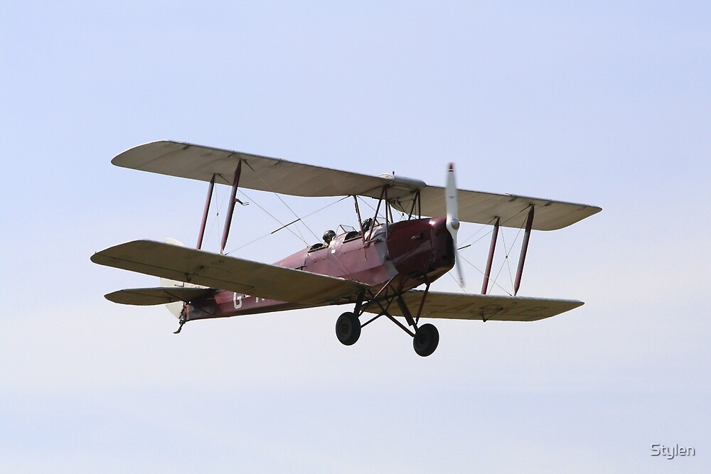 Tiger Moth in flight by Stylen