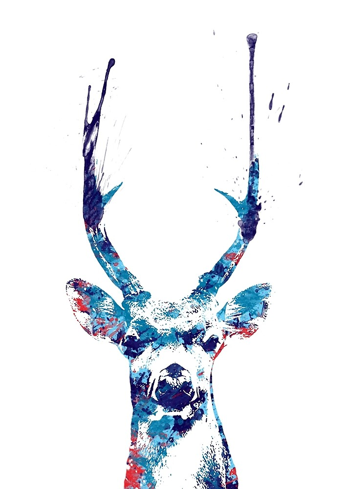 Deer by lauracscott