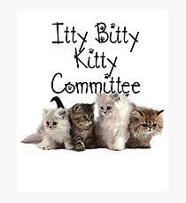 Itty Bitty Kitty Committee Photographic Print