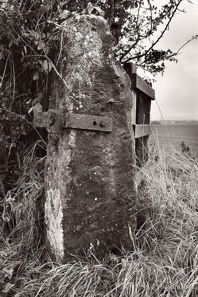 North Cumbrian Gatepost by Richard Ion