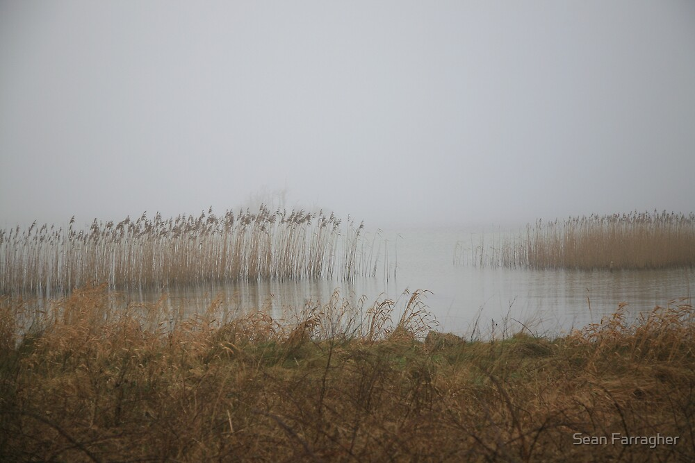 LAKE IN FOG by Sean Farragher