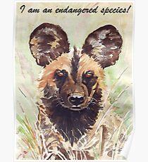 I am an endangered species! Poster