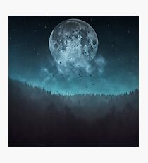 Moon over trees Photographic Print