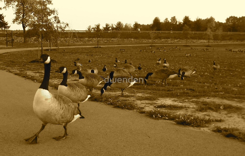 Follow the Leader by dwenden