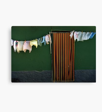 Bag Wash Canvas Print