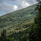 Mt. Washington Auto Road by infinitephotos