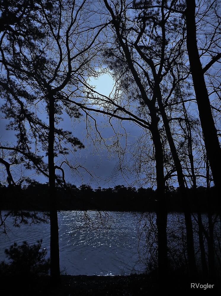 Winter Blues by RVogler