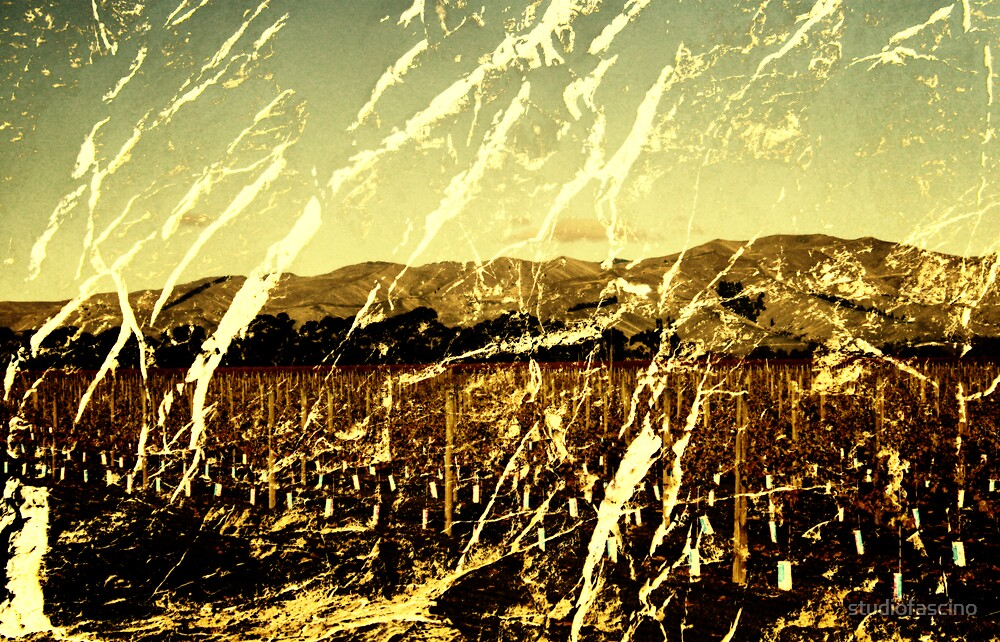 wither hills by studiofascino