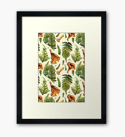 Ferns and mushrooms Framed Print