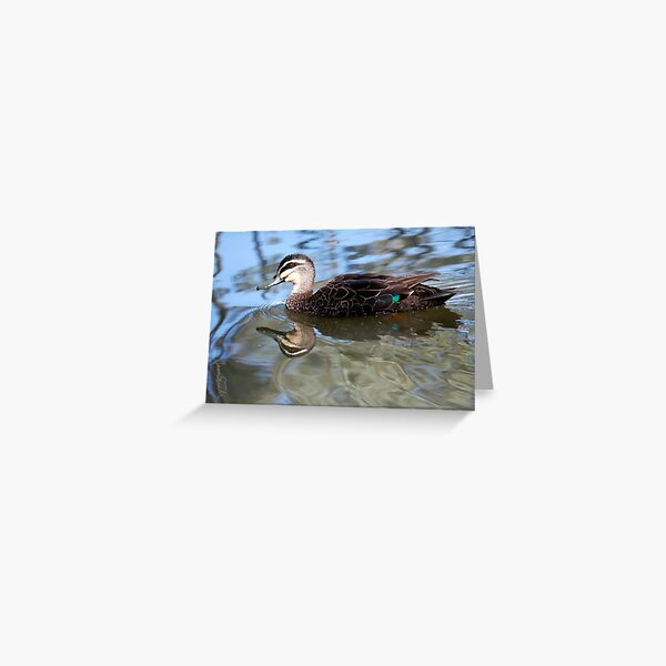 A good day for ducks Greeting Card
