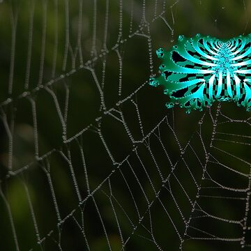 A Creepy Abstract Spider on It's Web by ZipaC