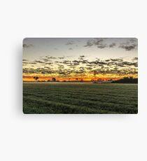 Sunrise over windmill in paddock Canvas Print