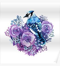 Blue Jay and Violet Flowers Watercolor  Poster