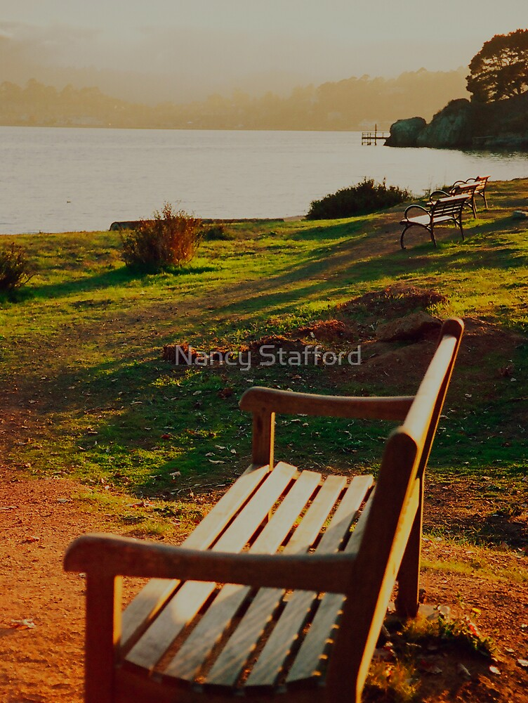 The Benches by Nancy Stafford