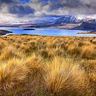 1402 Lake Tekapo from Mt John by Hans Kawitzki
