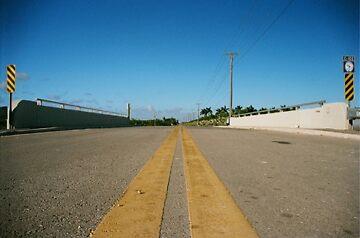 Homestead,FL by MariaSusana .