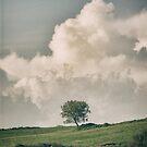outdoors3 by Daphne Kotsiani
