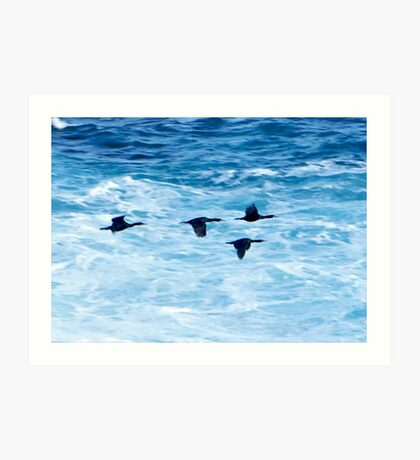 Cormorants  Skimming the Waves off Inishmore Art Print