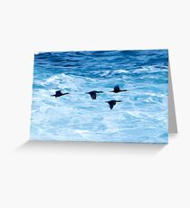 Cormorants  Skimming the Waves off Inishmore Greeting Card
