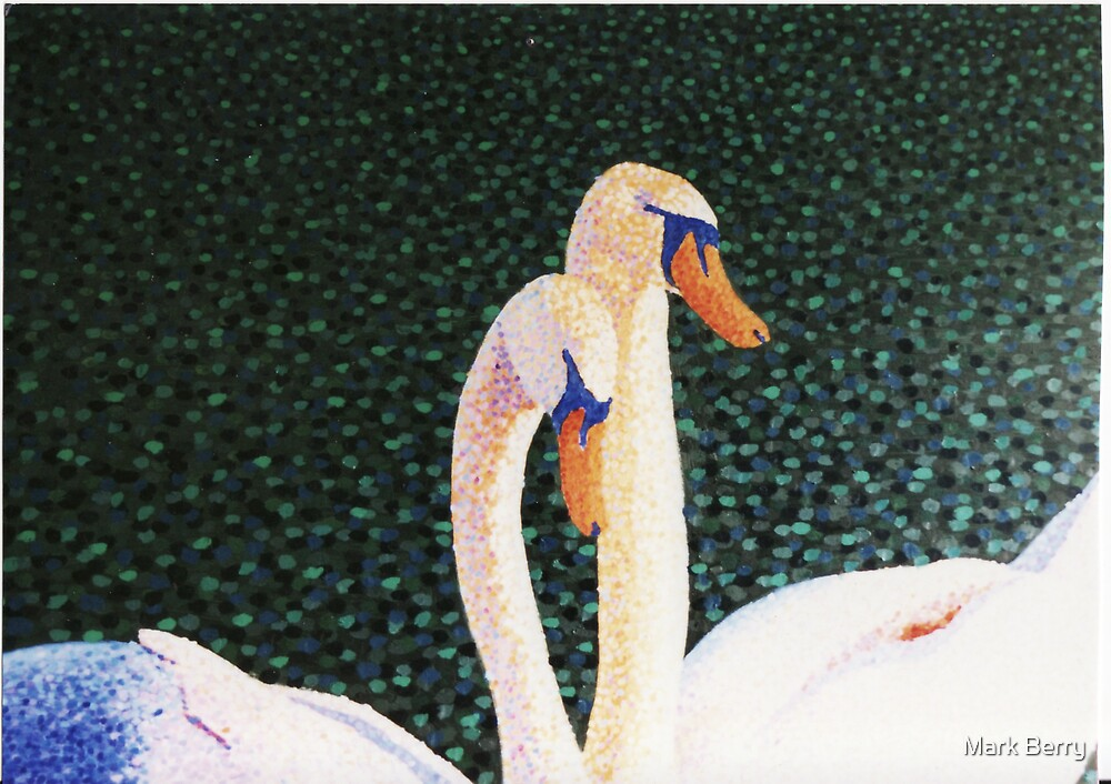 Swans 2 by Mark Berry