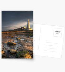 Rockpools Postcards