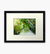 """""""CROSSOVER"""" Framed Print"""