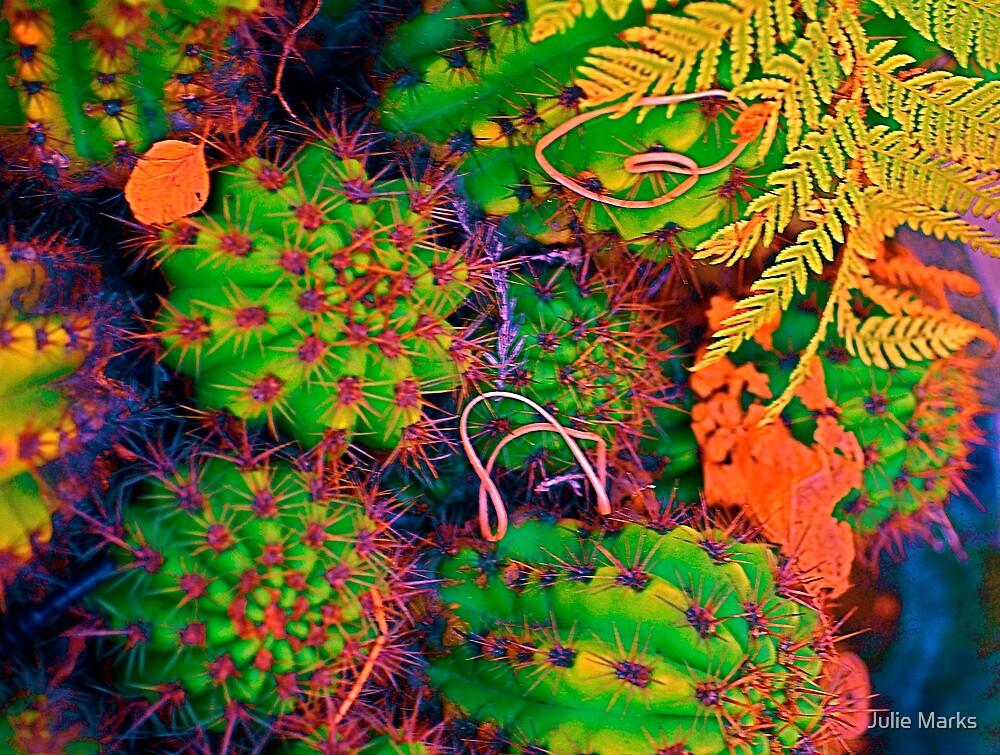 Midnight in the Cactus Garden by Julie Marks