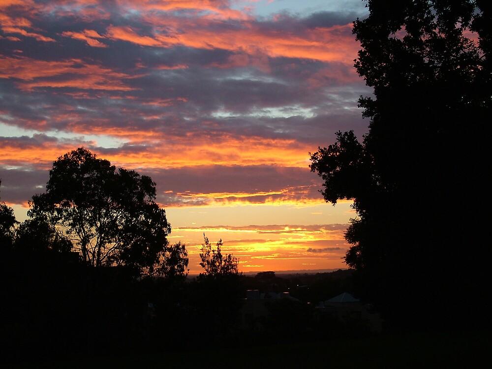 Summer sky by Fiona Moran