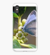 Holly on Holly iPhone Case/Skin