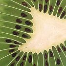 dive-in kiwi by cathy savels