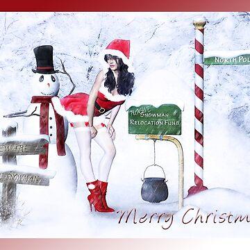 Rogue Snowman by Allegra
