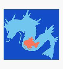 The Sea Dragon Photographic Print