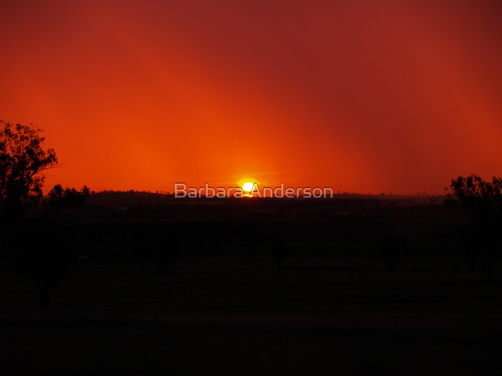 Fire in the Sky 2 by Barbara Anderson