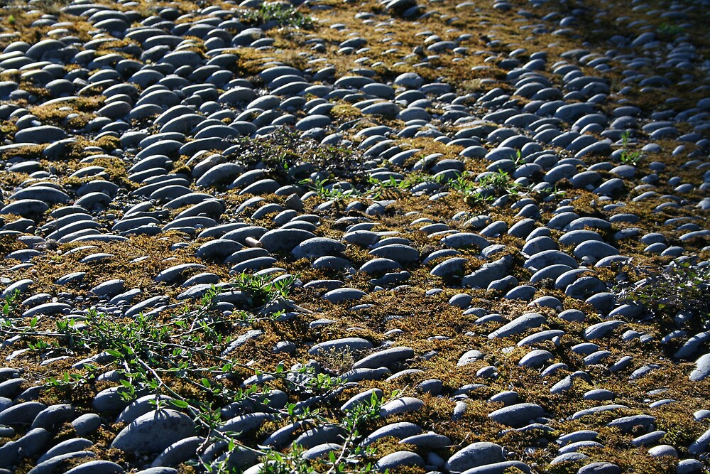 Cobblestones Garrettstown by Larry149