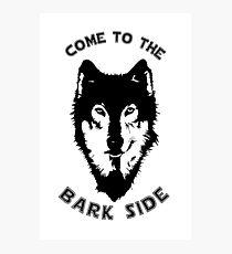 Star Wars - The Bark Side Husky Photographic Print