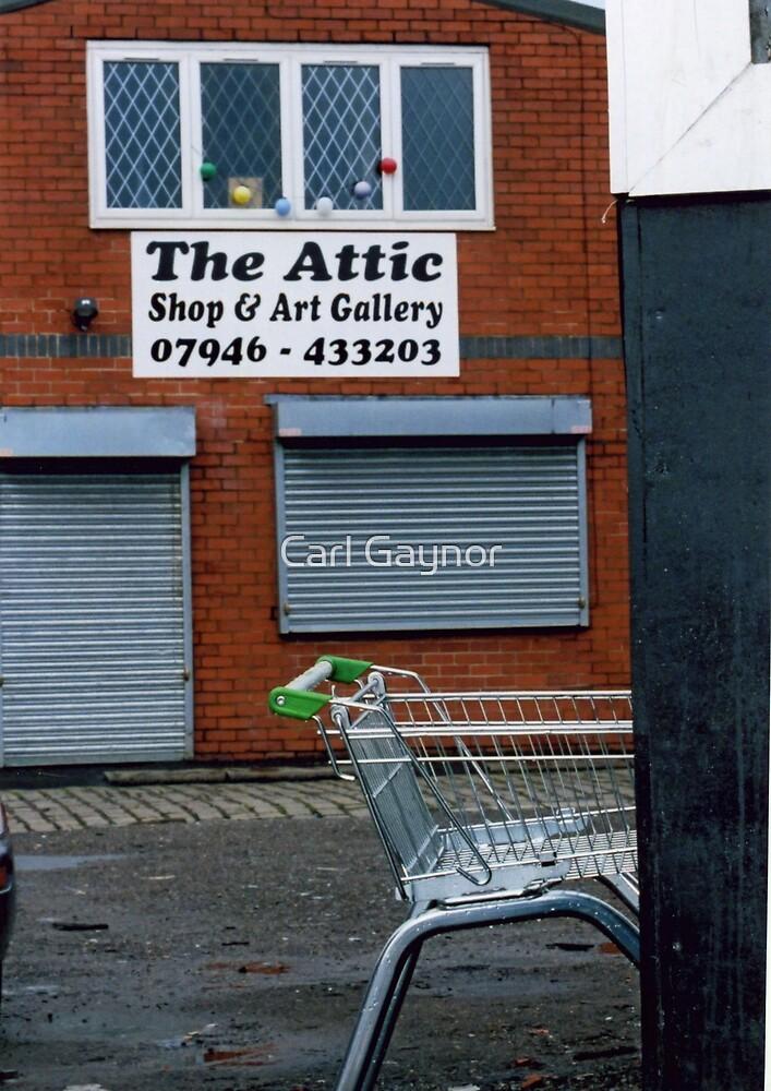 Art for Sale  by Carl Gaynor
