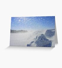 Snow frenzy Greeting Card