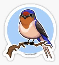 Cave Swallow Bird on Blue Background Sticker
