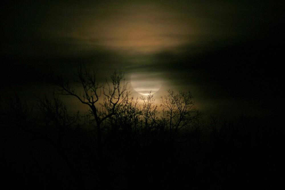 Moon Over Prince George by KEHarrison