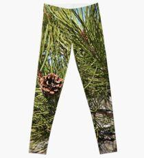 Pine tree Leggings