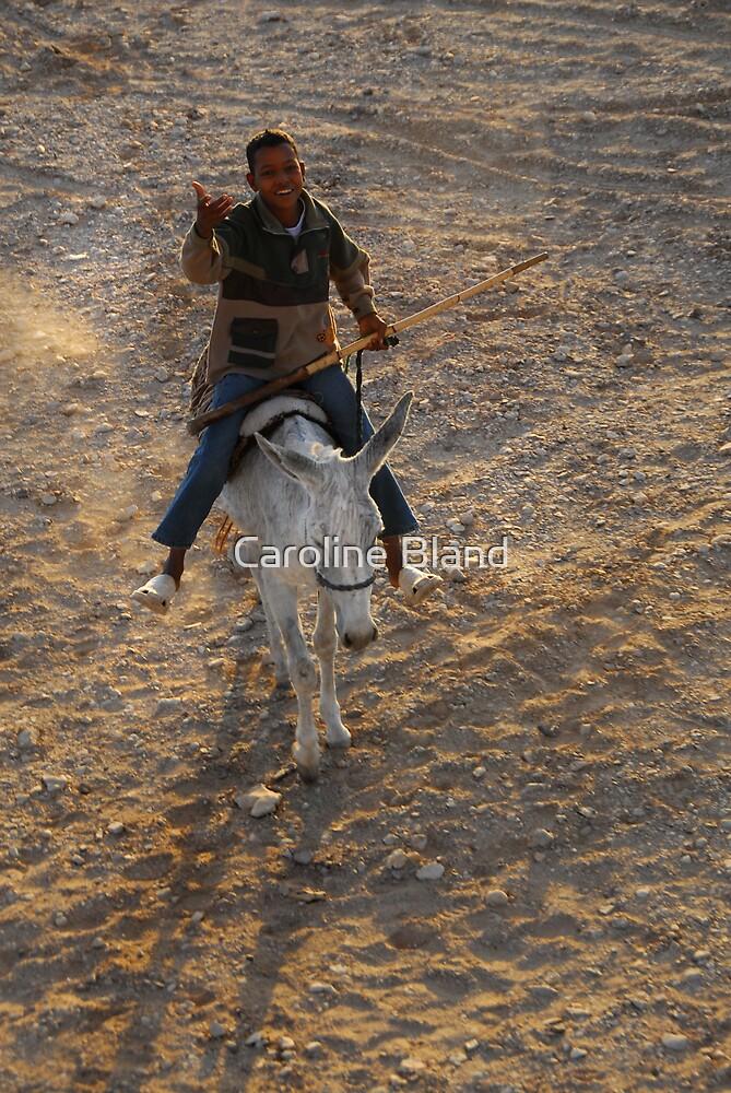 Donkey Ride by Caroline Bland